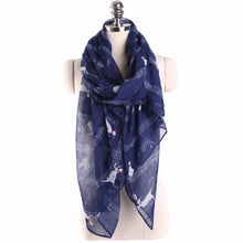 Ladies Long Scarf / Shawl - Assorted Colors - Diana's Space