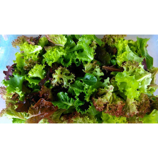Organic Mixed Salad Leaves 500g - Annie's Farm Produce