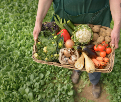 Tipperary Veg Box Delivery €55 box Large (N.B Check map area for delivery) - Annie's Farm Produce