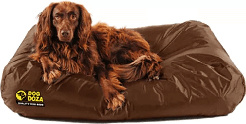 Dog Doza - Waterproof Active Memory Foam CRUMB