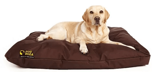 Dog Doza - Waterproof Cushion Beds