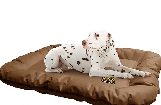 Dog Doza - Waterproof Dog Bolster Bed Mats - Zip Off Covers