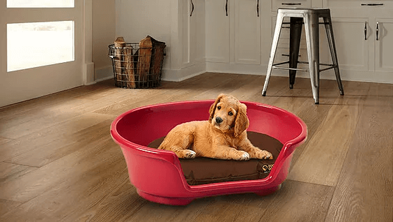 Dog Doza - Waterproof Oval Beds For Baskets