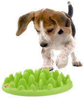 COA Green Mini Slow Feeding Dog Bowl
