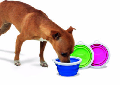 PetMate Silicone Travel Bowl