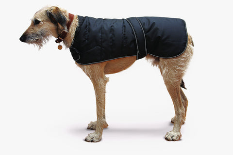 Black Harness Dog Coat