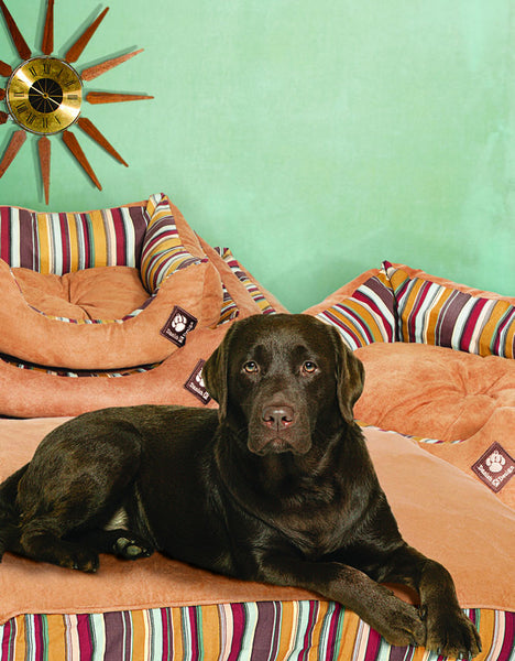 Danish Design Morocco Box Dog Duvet