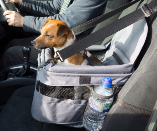 Henry Wag Dog Car Booster Seat