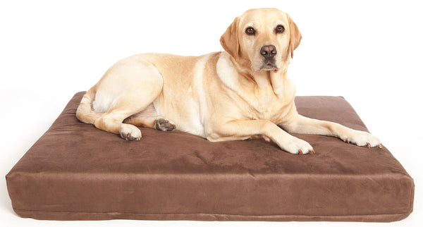 P&L Premium Memory Foam Dog Mattresses