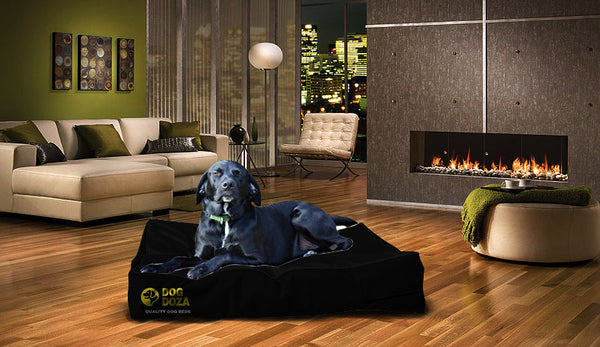 Dog Doza Waterproof Mattress Poly Bonde Dog Bed