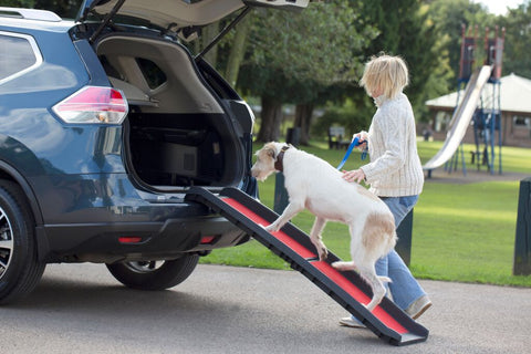 Henry Wag Lightweight Dog Folding Pet Ramp