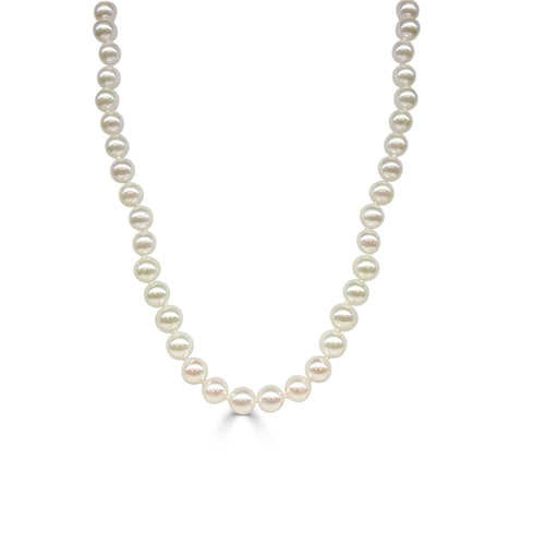 Akoya Pearl Strand 6.5-7mm With 14 Karat Yellow Gold Fancy Clasp