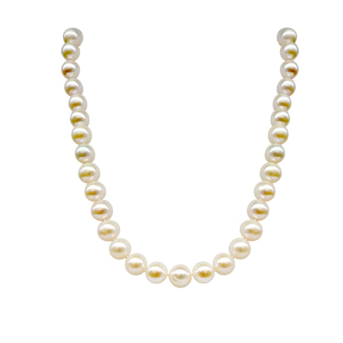 Freshwater Pearl 8-8.5mm Necklace With 14 Karat Clasp