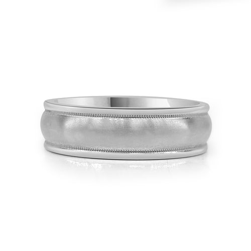 Titanium Brushed Band With Polished Edges