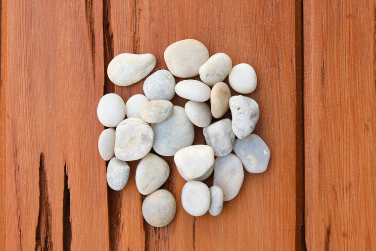 Smooth Beige Mix River Stones - Terrarium Supplies