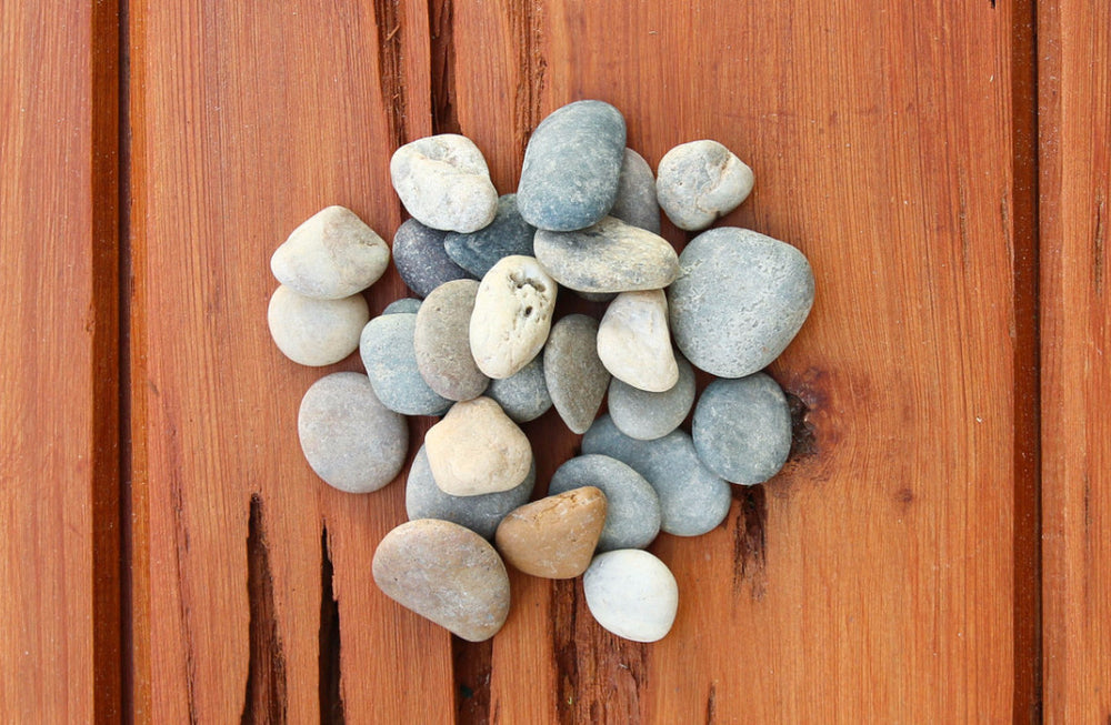 Smooth Gray Mix River Stones - Terrarium Supplies