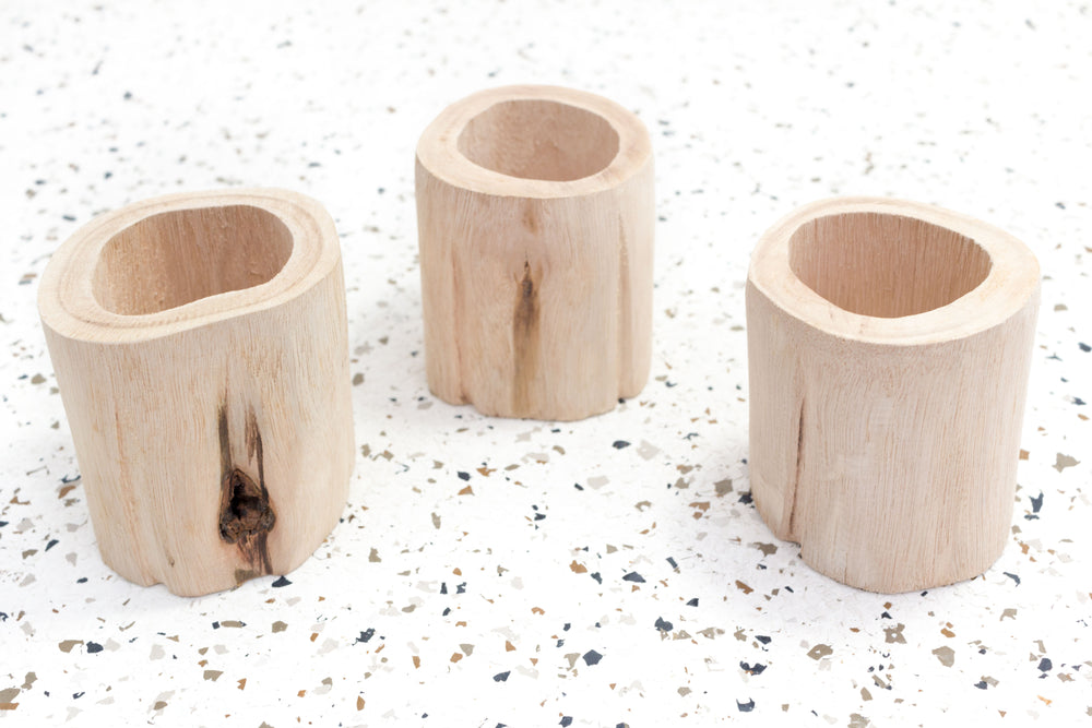 Packs of 3 or 6 Small Wooden Driftwood Containers with Assorted Air Plants