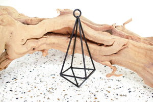 Geometric Pendant Hanger with Assorted Air Plant