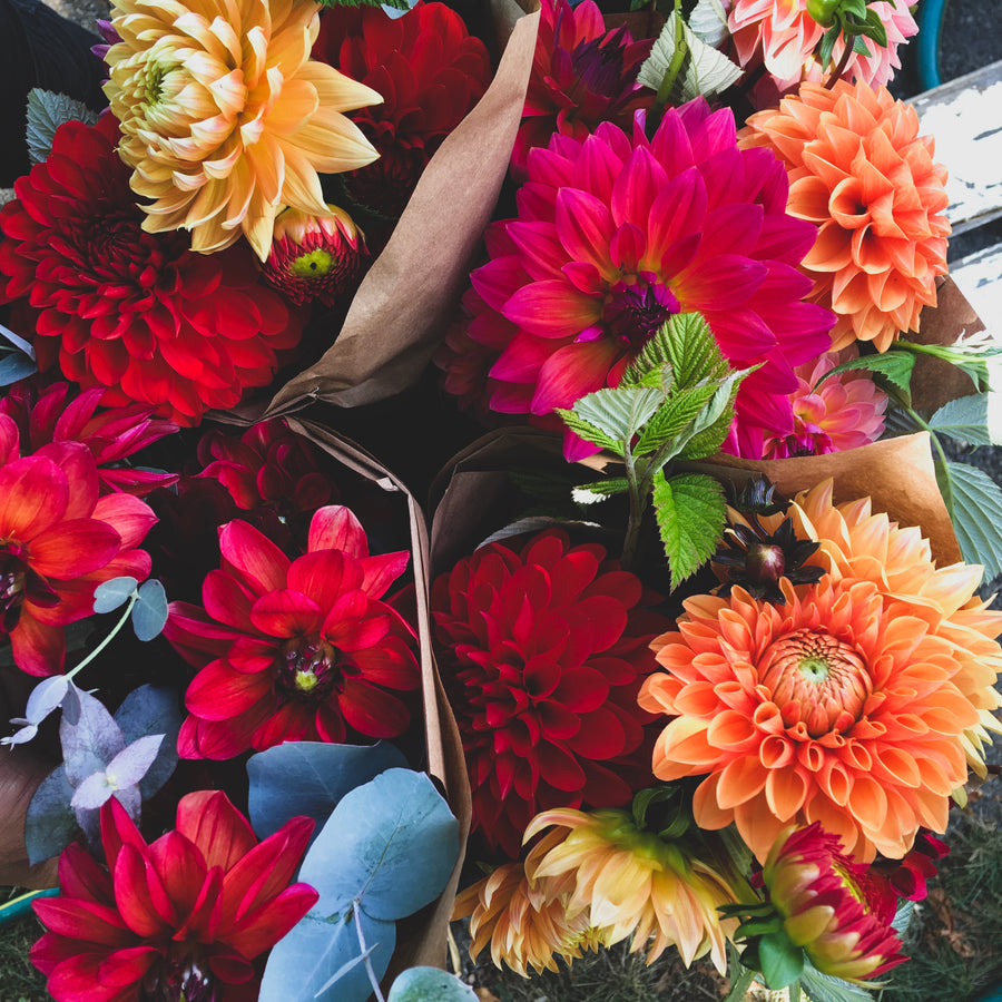 Weekly Summer Flower CSA: 8 Bouquets Total