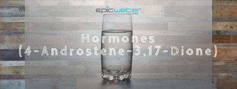 Hormones 4-Androstene-3,17-Dione water testing sex filter