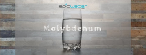molybdenum water filter filtration health levels