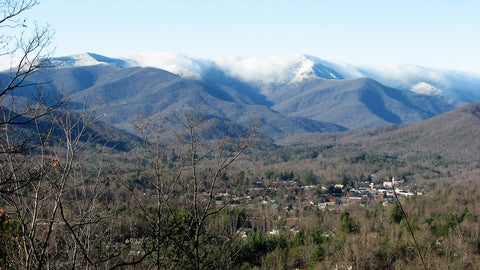 Swannanoa nc water testing quality reports lead fluoride filters