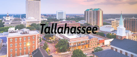 Tallahassee Florida Water Quality Report Lead Fluoride