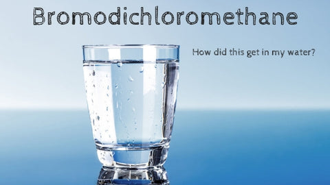Bromodichloromethane Drinking Tap Water Is my water safe