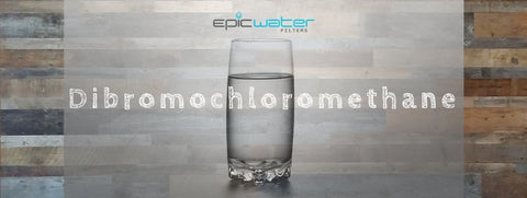 dibromochloromethane water filter tap drinking remove contaminant filtration best way safe to drink