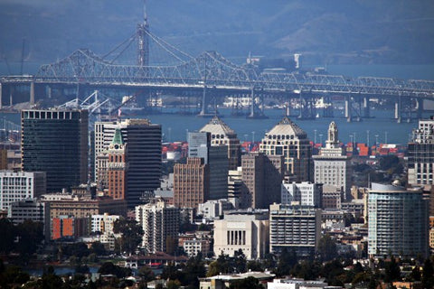 Oakland, California Water Quality Report