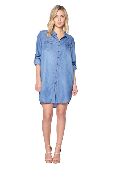 TERRY-LYNN DENIM DRESS
