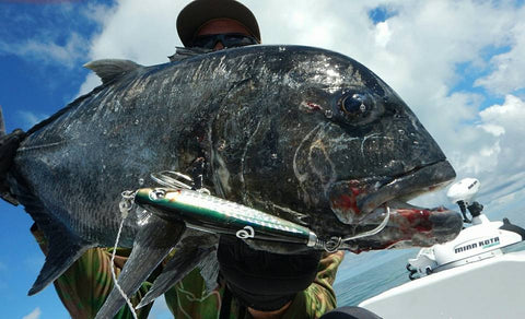 Photo of a Giant Trevally caught using an Old Dog Lures by Dave Killalea Stix