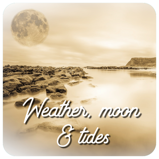 Weather moon and tides - Old Dog Lures