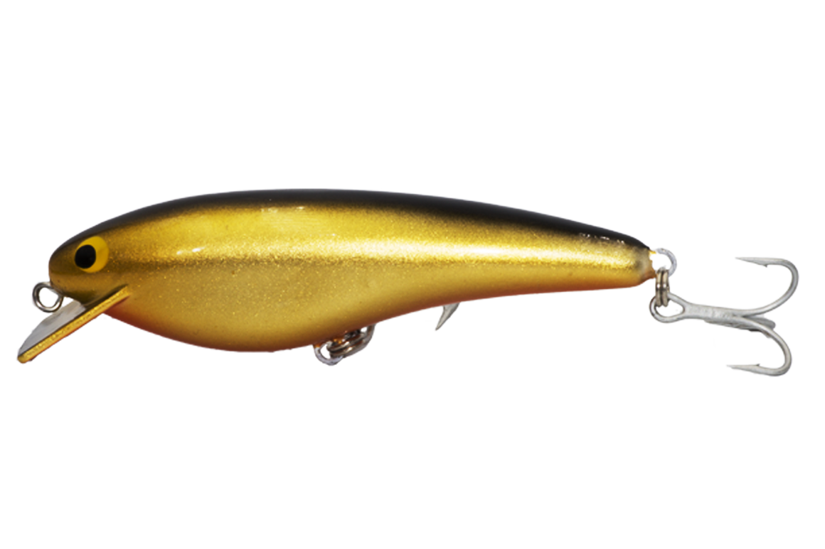 Jew Dog Shallow - 150mm - timber fishing lure - That's Gold colour - Old Dog Lures