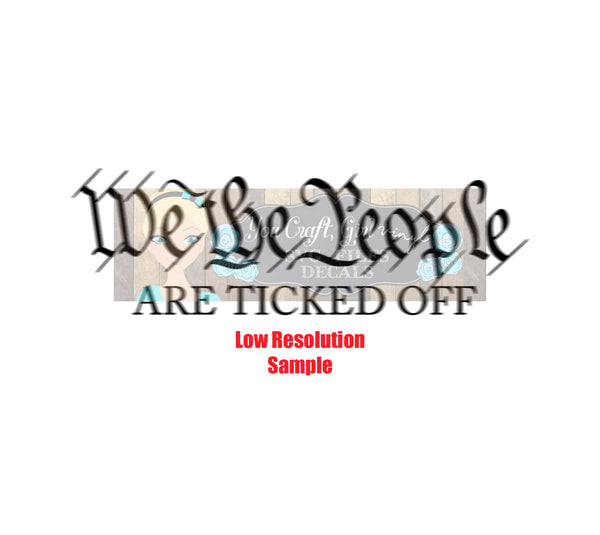 We the People are Ticked Svg  Commercial SVG  political svg  Presidential election svg bumper sticker Democrat voting svg