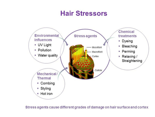 What are the most common causes of hair loss due to hair breakage?