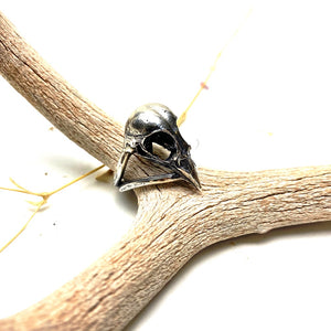 Finch Skull Sterling Silver Ring
