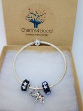 AWF Lucky Elephant Charm Bracelet Premier Starter Set - Solid Bangle