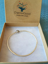 Silver (925 Pure) Flexible Charm Bracelet