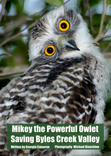 SOLD OUT FIRST POSTER - Mikey the Powerful Owlet - Poster (price includes domestic postage & handling)