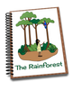 Teaching About The Rainforest
