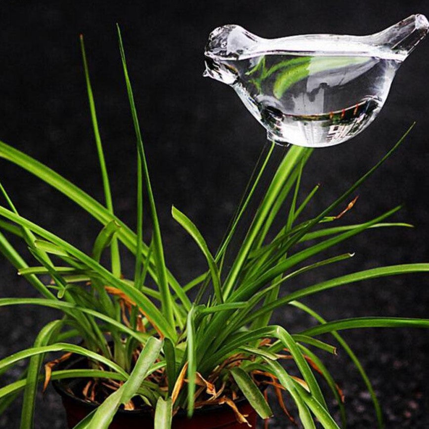 Self Watering Glass Dove