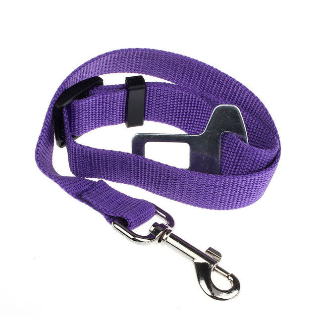 Vehicle  Safety Leash - Dog