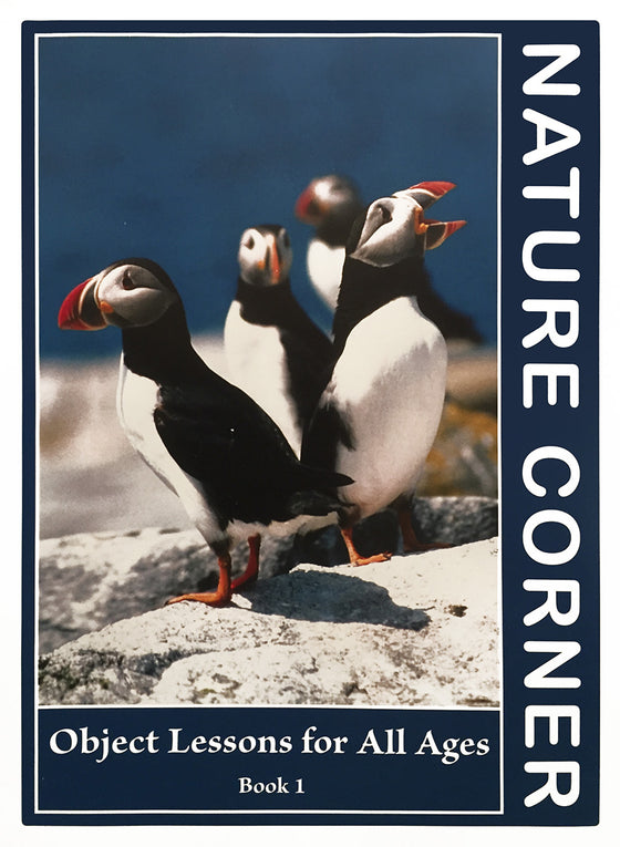 Nature Corner, Object Lessons for All Ages - Book 1