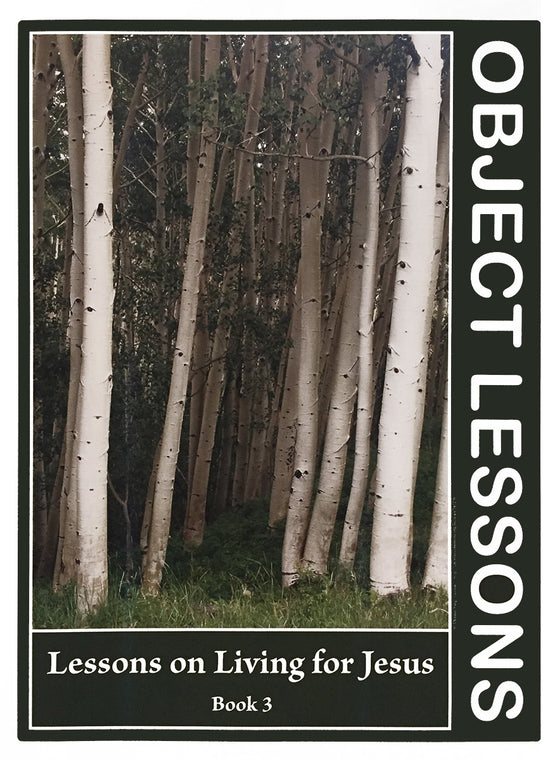 Object Lessons, Lessons on Living for Jesus - Book 3
