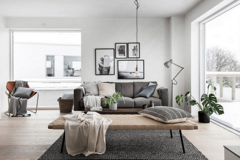Scandinavian living room with couch and coffee table