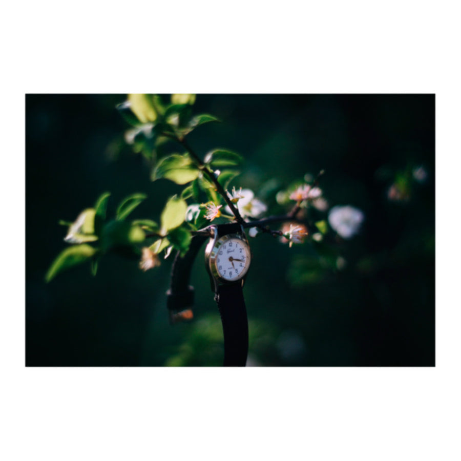 All Things Go Reignbow Watch Photo Print