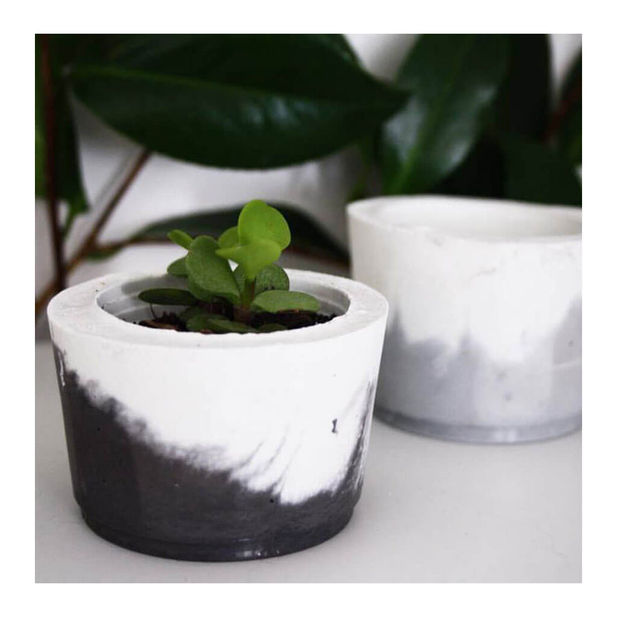 Decor Whitewick Home Concrete Succulent Pot   Small
