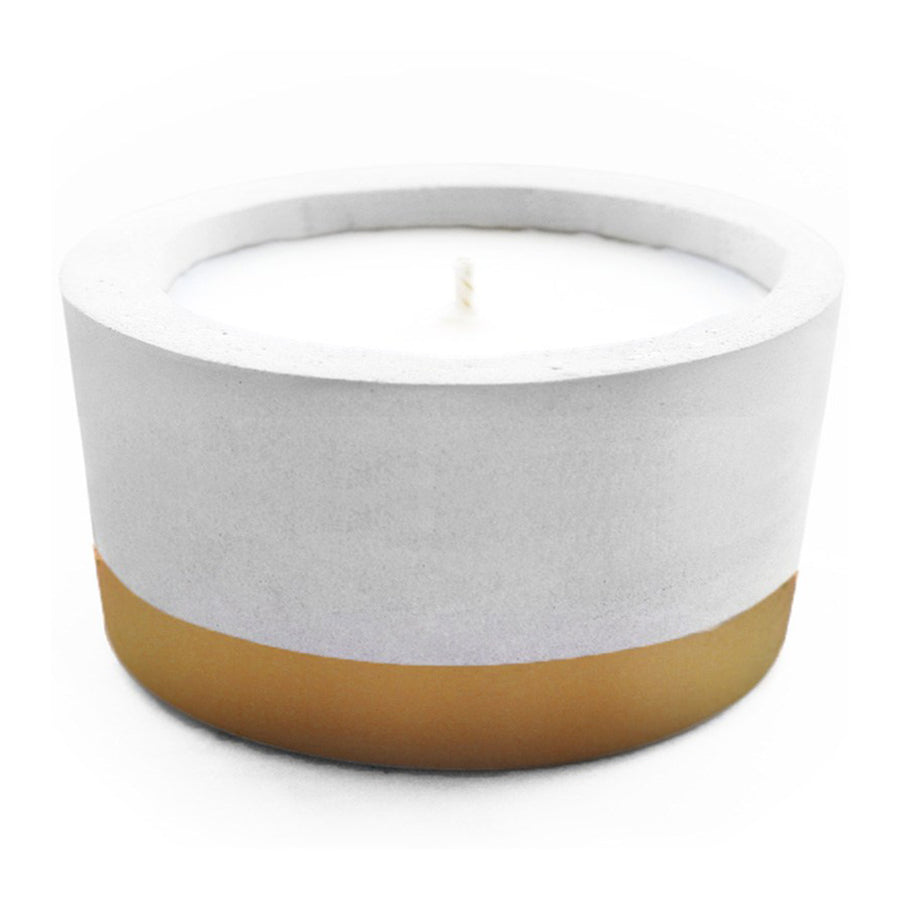 Decor Whitewick Home Concrete Soy Candle - Fig Tree, Medium