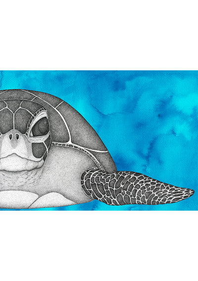 Susan the Sea Turtle with Watercolour